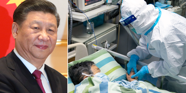 President Xi Jinping. TT