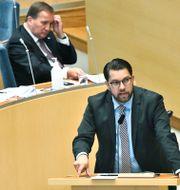 Statsminister Stefan Löfven (S) och Jimmie Åkesson (SD). Claudio Bresciani/TT / TT NYHETSBYRÅN