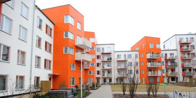 Annedal i Stockholm. HENRIK MONTGOMERY / TT / TT NYHETSBYRÅN
