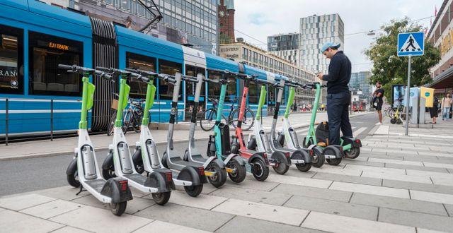 Elsparkcyklar står uppställda på rad på Vasagatan i Stockholm. Gustaf Månsson/SvD/TT / TT NYHETSBYRÅN