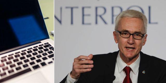Interpols generalsekreterare Jürgen Stock. TT.