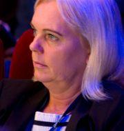 Arkivbild: Kristina Winberg under Sverigedemokraternas landsdagar i Lund 2015 Björn Lindgren/TT / TT NYHETSBYRÅN