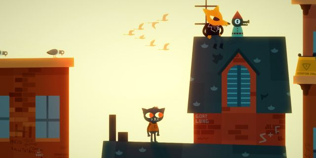 Night in the woods. PRESS