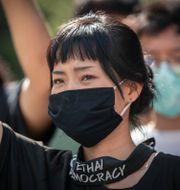 En demokratidemonstrant i Bangkok.  Gemunu Amarasinghe / TT NYHETSBYRÅN