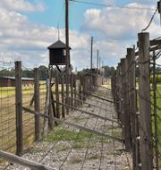 Förintelselägret Majdanek i Polen. Jonas Ekströmer/TT / TT NYHETSBYRÅN