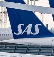Parkerade SAS-plan på Kastrup under pilotstrejken.  Johan Nilsson/TT / TT NYHETSBYRÅN