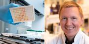 Tester för covid-19/ Barnläkaren och immunologen Petter Brodin Johan Nilsson/TT samt Ulf Sirborn/ KI pressbild