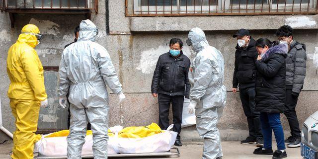 En död kropp i Wuhan tas omhand av begravningspersonal.   TT NYHETSBYRÅN