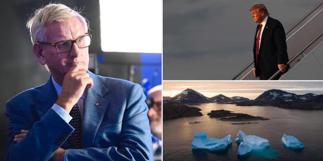 Carl Bildt/Donald Trump/Grönland TT