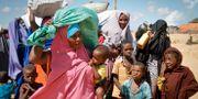 Kvinnor och barn anländer till ett tillfälligt flyktingläger utanför Mogadishu i maj 2019. Farah Abdi Warsameh / TT NYHETSBYRÅN