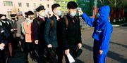 Studenter i Pyongyang den 22 april. Jon Chol Jin / TT NYHETSBYRÅN