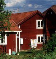 Arkivbild.  Pawel Flato/TT / TT NYHETSBYRÅN