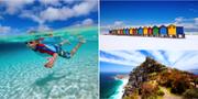 Surf, snorkling eller familjemys i solen – i Kapstaden finns en strand för varje smak. Istock