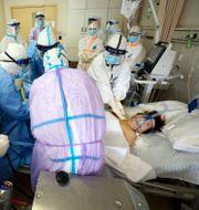 En allvarligt sjuk patient behandlas i Wuhan den 1 mars. TT NYHETSBYRÅN