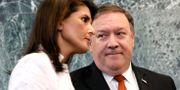 Mike Pompeo och USA:s FN-ambassadör Nikki Haley. BRENDAN MCDERMID / TT NYHETSBYRÅN