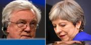 Storbritanniens brexitminister David Davis och premiärminister Theresa May.  TT