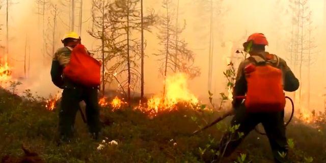 Brandmän i Yakutia. TT NYHETSBYRÅN