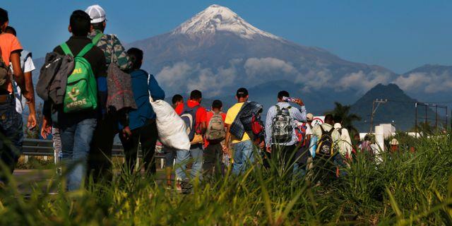 Migranter på väg mot USA. Marco Ugarte / TT NYHETSBYRÅN/ NTB Scanpix