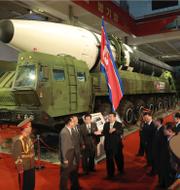 Bilder från vapenutställningen i Pyongyang. TT