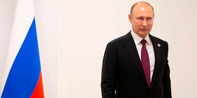 Vladimir Putin. ALEXANDER ZEMLIANICHENKO / POOL