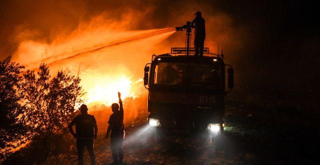 Turkiska brandmän som kämpade mot branden under natten till fredagen.  TT NYHETSBYRÅN