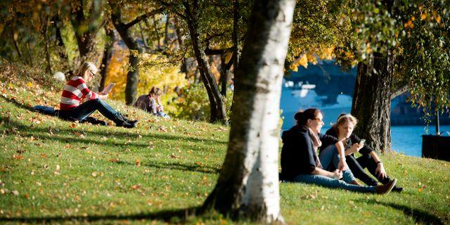 Arkivbild, Stockholm 2013. JESSICA GOW / TT / TT NYHETSBYRÅN