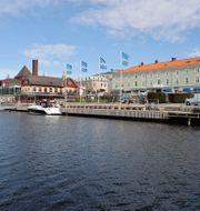 Gästhamnen i Strömstad. Illustrationsbild. Adam Ihse/TT / TT NYHETSBYRÅN
