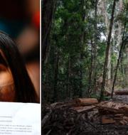 Bild från protest och bild från Amazonas TT