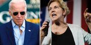 Joe Biden och Elizabeth Warren. AP