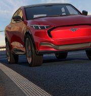 Ford. Shutterstock
