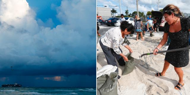 Människor i Florida binkrar mat och vatten och fyller sandsäckar som ska skydda mot orkanen.  TT