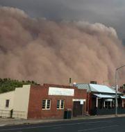 En gigantisk sandstorm drar in över Dubbos i australiska delstaten New South Wales. Ian Harris /AP/TT
