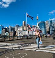 Australiens största stad Sydney.  Gustav Sjöholm/TT / TT NYHETSBYRÅN