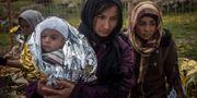 Kvinnor och barn som flytt kommer fram till grekiska ön Lesbos. Santi Palacios / TT / NTB Scanpix