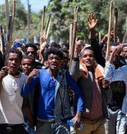 Demonstranter från folkgruppen Oromo i Adis Abeba. Tiksa Negeri / TT NYHETSBYRÅN