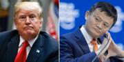 President Donald Trump och Alibabas grundare Jack Ma.  TT