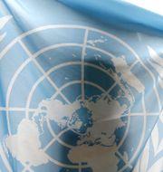 En FN-flagga.  Steven Senne / TT NYHETSBYRÅN