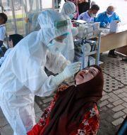 En kvinna testas för covid-19 i Indonesien.  Binsar Bakkara / TT NYHETSBYRÅN