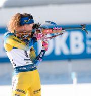 Hanna Öberg på skidskytte-VM i Antholz. Fredrik Sandberg/TT / TT NYHETSBYRÅN