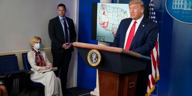 Deborah Birx och Donald Trump. Evan Vucci / TT NYHETSBYRÅN