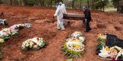 Begravningsarbetare i Brasilien. Andre Penner / TT NYHETSBYRÅN