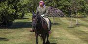 Storbritanniens drottning Elizabeth II. Steve Parsons / TT NYHETSBYRÅN