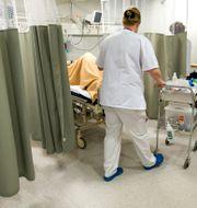 Akutmottagningen på Danderyds sjukhus. Arkivbild.  Bertil Ericson / TT / TT NYHETSBYRÅN