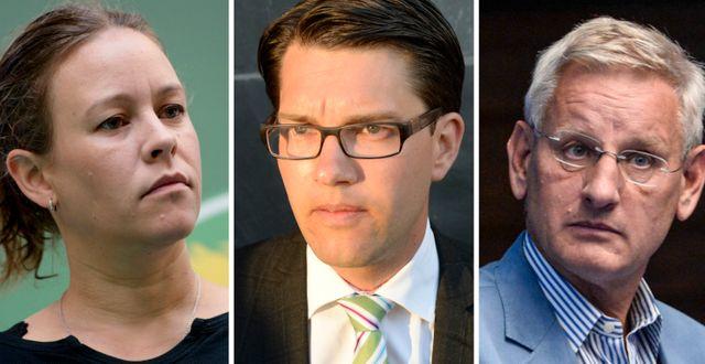 Maria Wetterstrand, Jimmie Åkesson och Carl Bildt. TT