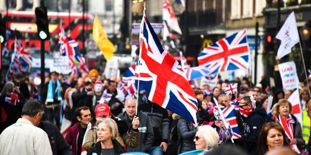 Pro-brexitdemonstranter i London.  Alberto Pezzali / TT NYHETSBYRÅN