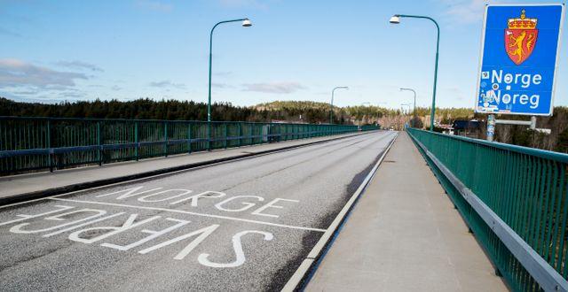 Gränsen mellan Norge och Sverige.  Vidar Ruud / TT NYHETSBYRÅN