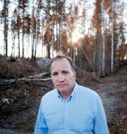 Stefan Löfven (S) Mats Andersson/TT / TT NYHETSBYRÅN