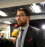 SD-ledaren Jimmie Åkesson. Fredrik Sandberg/TT / TT NYHETSBYRÅN