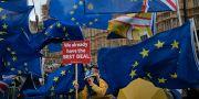 Demonstranter som är emot brexit utanför parlamentet på tisdagen. Tim Ireland / TT NYHETSBYRÅN/ NTB Scanpix