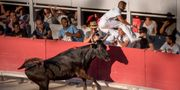 Tjurfäktning är en kontroversiell sport i Spanien. Ralf Steinberger/Wikicommons